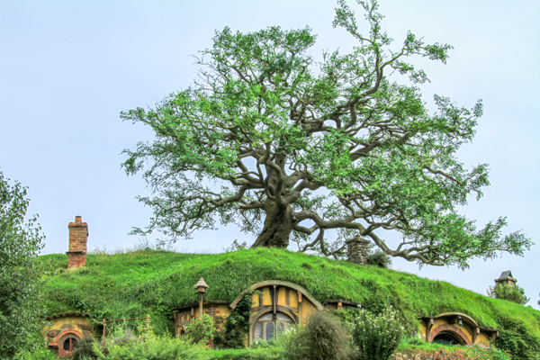 Bags End:Arvore mais famosa do Condado Hobbit