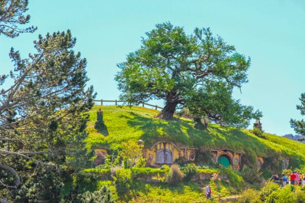 Hobbiton e suas colinas verdejantes na Nova Zelândia