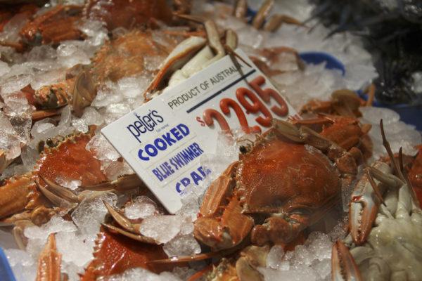 King Crab no Mercado dos Peixes de Sydney na Australia