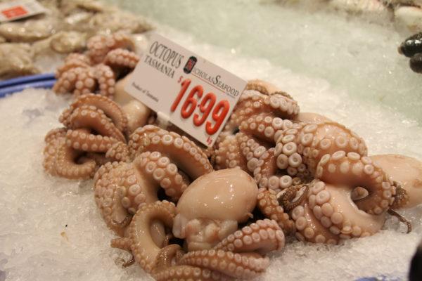 Polvo no Mercado dos Peixes de Sydney na Australia
