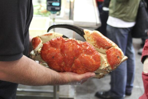 Caranguejo Gigante no Mercado dos Peixes de Sydney na Australia