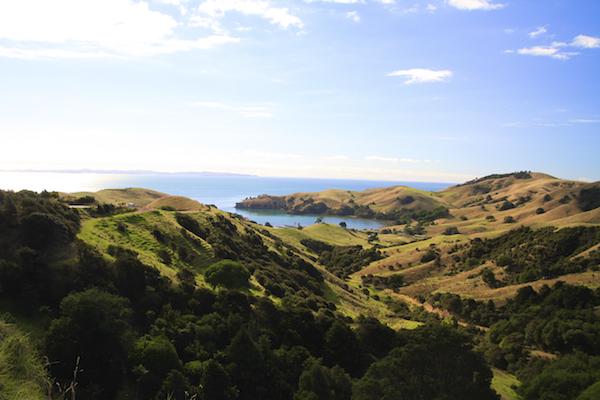 Paisagem em Coromandel Península na Nova Zelândia
