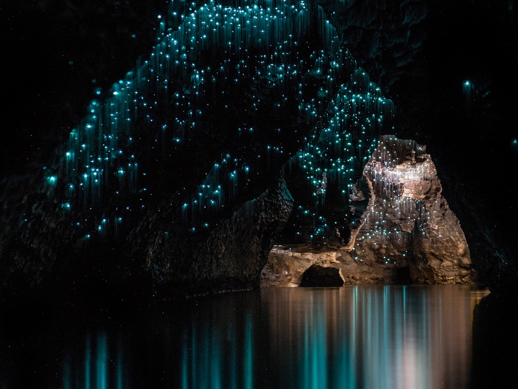 Waitomo Caverna Nova Zelandia Glowworm