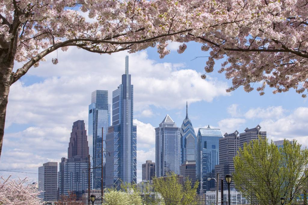 Cerejeiras em Philadelphia